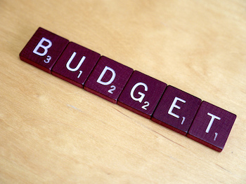 budget for new life